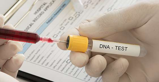 New Uses for Animal DNA