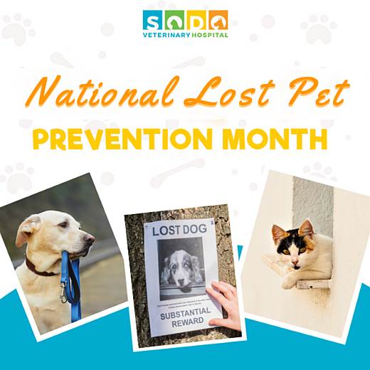 national prevention month july 2021